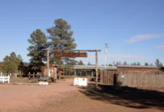 Enjoy the Horse Rentals at Bison Ranch.  Take a guided ride into the Sitgreaves National Forest.  Stable rentals are also available for those of you lucky to have your own horses for trail rides.