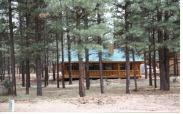 Bison Ranch Real Estate for sale - Cabins for Sale in the Bison Ranch community -  Heber Overgaard Real Estate - Walk to Bison Town - See the Bison Herd - Bison Ranch Real Estate and Property listings - Choose Kent as your Real Estate Agent
